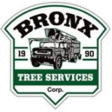 Bronx Tree Services | Bronx Tree Company | 646-852-3327